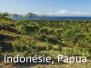 Papoušci-Indonésie