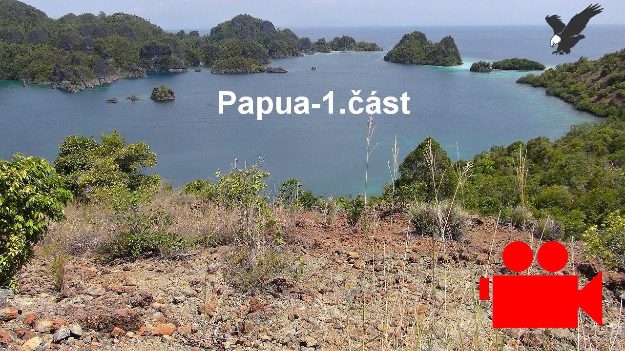 Papua 1