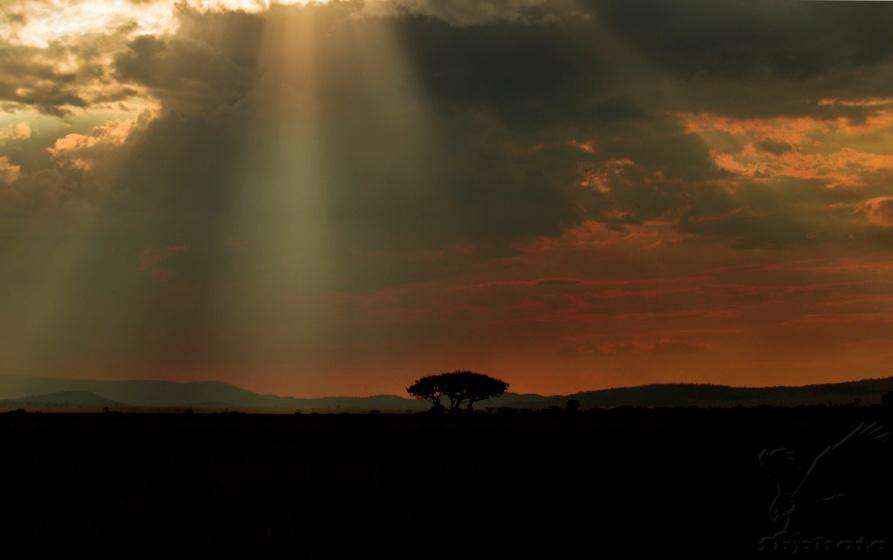 Bouřka nad pláněmi Serengeti