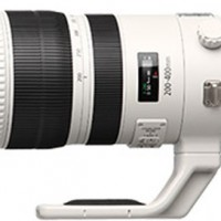 Canon-EF-200-400mm-f-4-L-IS-USM-Extender-1.4x-Lens