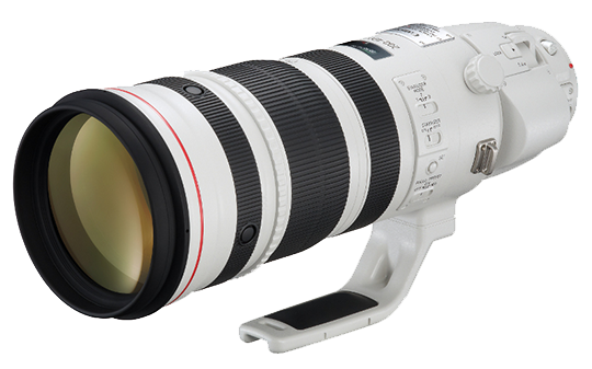 Canon-EF-200-400mm-f-4,0-L-IS-USM